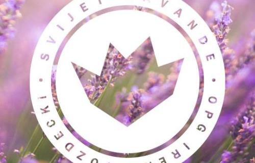 vozdecki_featured