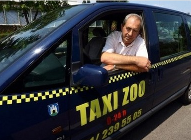 taxi_zoo_featured