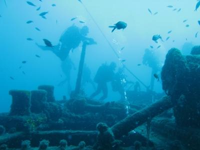 blue_diving_03