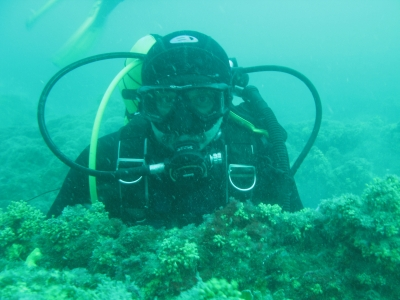 blue_diving_featured