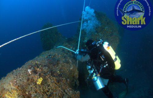 diving_centar_shark_01