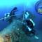 diving_centar_shark_featured